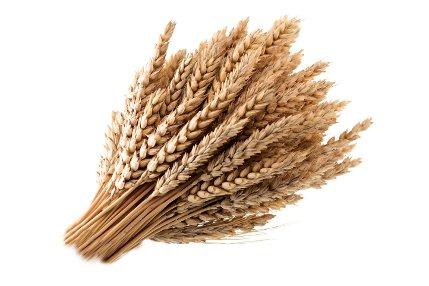 Cerealele Contin Seleniu