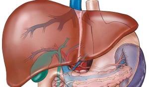 Liver Aid Protejaza Ficatul