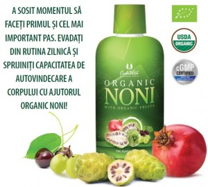 noul-noni-organic